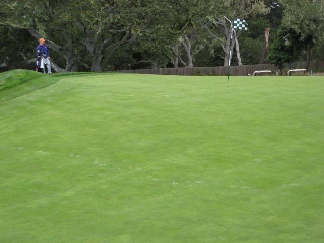 PB 14 - Green 2