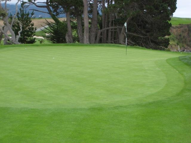 PB 5 - Green
