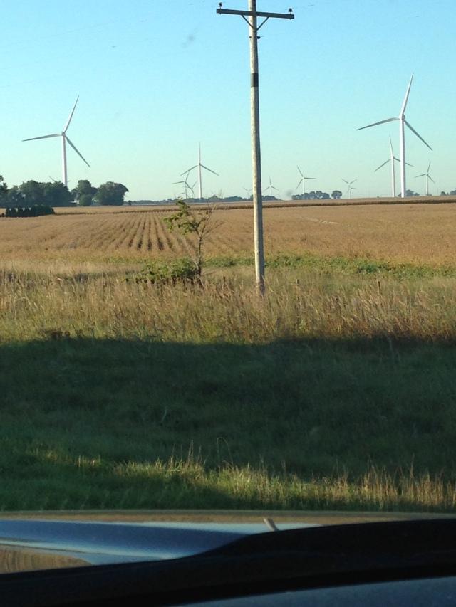 Cog - Windmill 2
