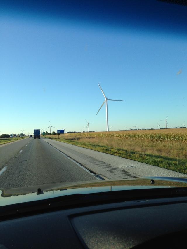 Cog - Windmill