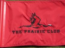 PCD - FLAG